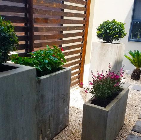 planter after 3.jpg