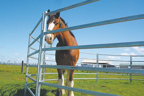 6 oval Rail Horse Panels 1.8x2.1m