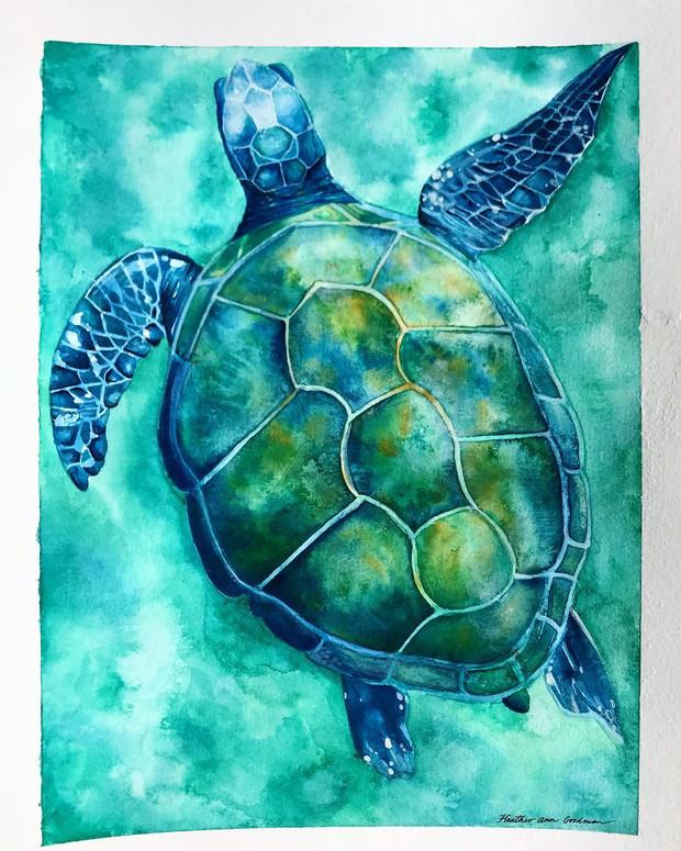 Watercolor Turtle