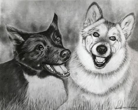 Tikka & Shiloh