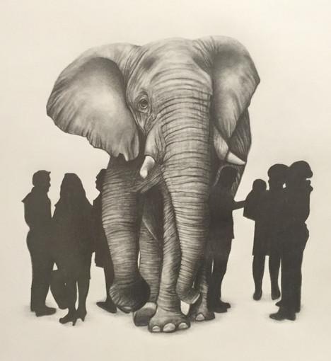 Elephant in the Room II