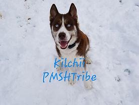 Kilchii.jpg