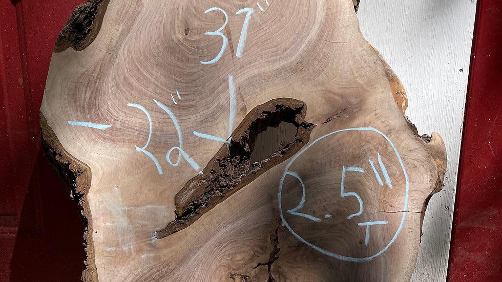 "Black Walnut Round/ Cookie 37""x17""x2.5"""