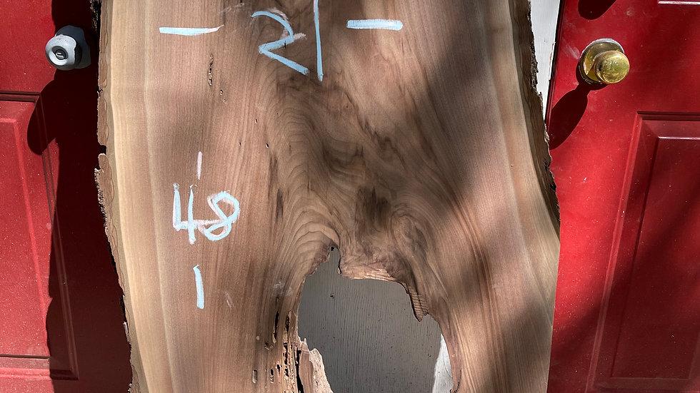 "Decayed Black Walnut Slab 48""x23""x2"""