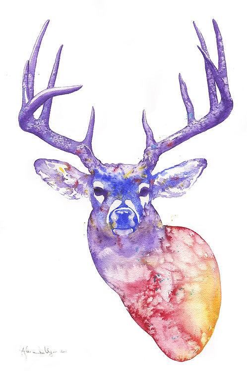 "Rainbow Deer 10.5"" x 16"" (26.67 x 40.64 cm)"
