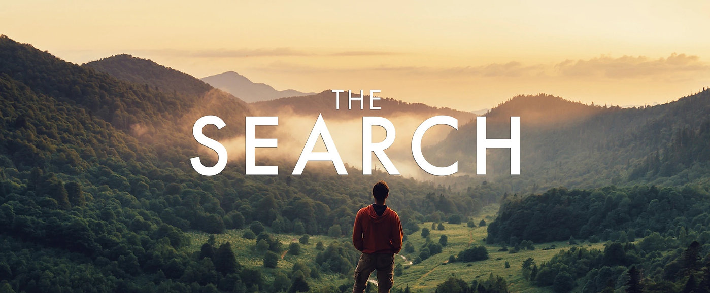 The Search banner.jpg