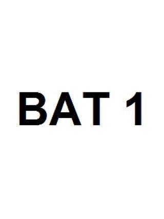 BAT 1 INSTITUT CAMBRILS