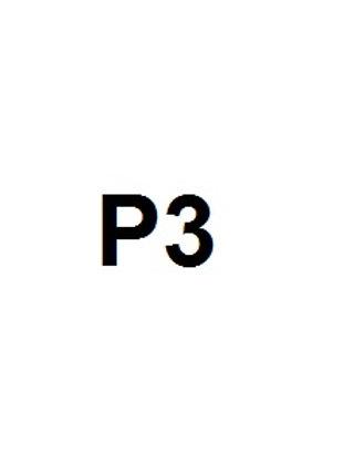 P3 ESCOLA VIDAL I BARRAQUER