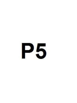 P5 ESCOLA GUILLEM FORTUNY