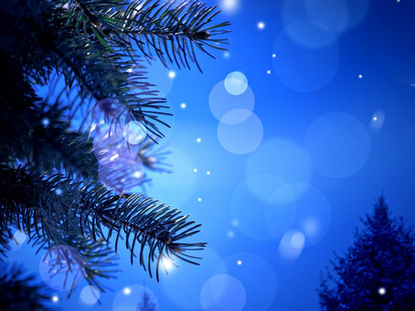 Workshop Scheduled: Cultivate Holiday Calm with Yoga Nidra