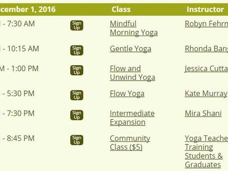 Introducing Mindful Morning Yoga at Durham Yoga Company