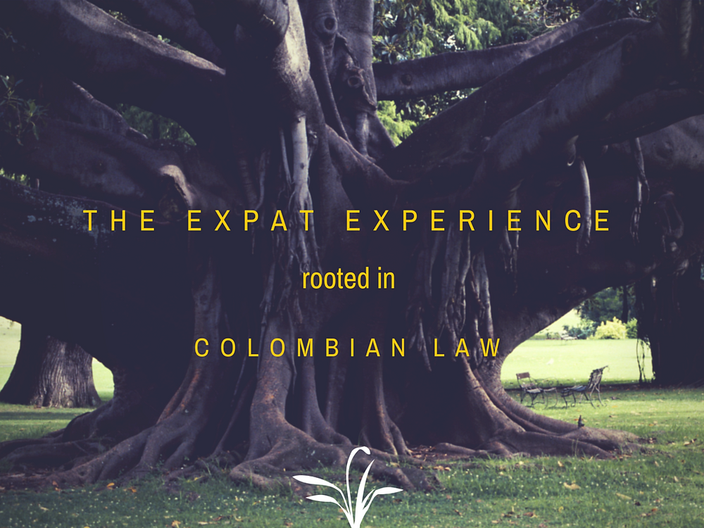 Expat Services, Medellin Lawyer,Colombian Visa, Real Estate Medellin, Real Estate Law, Foreign Exchange, Steckenreiter Serna and Associates