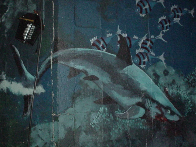 The Hurricane, mural (detail)