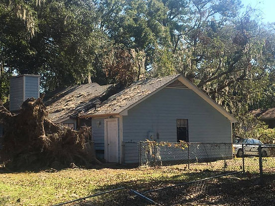Storm Damage, Tree Service, Best, Professional, Experienced, Recommended, Houston Area, Magnolia, Tomball, Woodlands, Conroe, Cypress, Free Estimate, Cut Tree, Storm Damage, Climber, Cardenas Tree Service, Sun, Cardenastreeservice.com, Stump Grinding, Tree Trimming