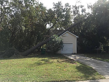Emergency Tree Service, Best, Professional, Experienced, Recommended, Houston Area, Magnolia, Tomball, Woodlands, Conroe, Cypress, Free Estimate, Cut Tree, Storm Damage, Climber, Cardenas Tree Service, Sun, Cardenastreeservice.com, Stump Grinding, Tree Trimming