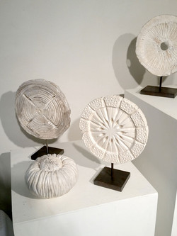 Fossil Series