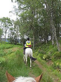 Scotland ride.jpg