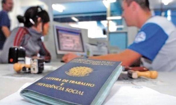 Holambra tem saldo recorde de empregos com carteira assinada