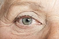 Envelhescência