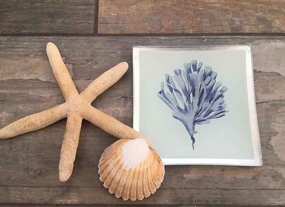 Gisela Graham glass blue coral decorative plate