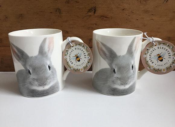 Botanical Discovery Set of 2 Rabbit Fine China Mugs