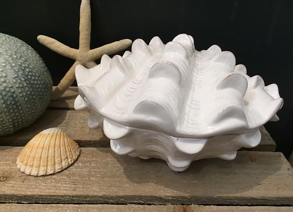 Gisela Graham white ceramic Clam shell Trinket Box
