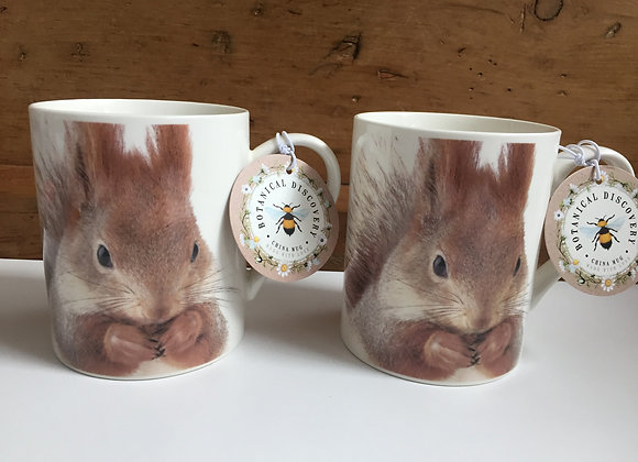 Botanical Discovery Set of 2 Squirrel China Mugs