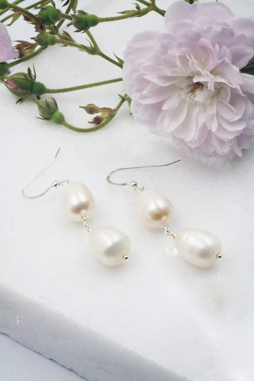 Protomedeia Earrings