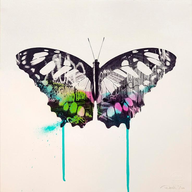 Graffiti_Butterfly_1.jpg