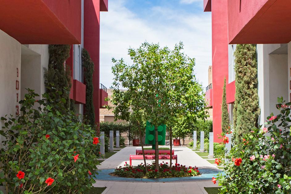 Condo / Townhome Courtyard