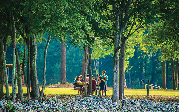 Peachtree City Park