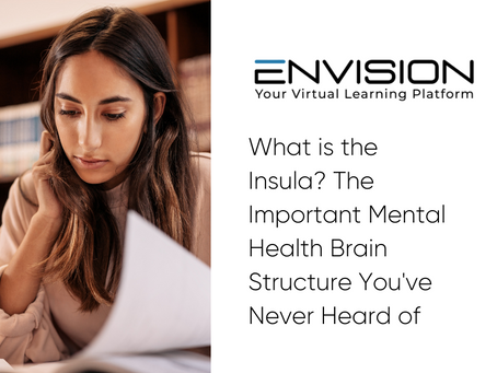 What is the Insula? The Important Mental Health Brain Structure You've Never Heard of