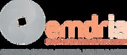 EMDRIA Updated - 2021.png