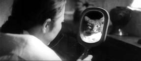 Salinma / A Devilish Murder (1965)