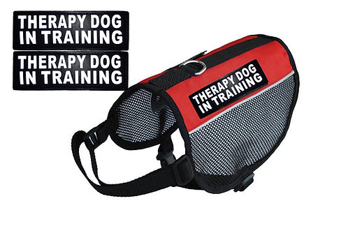 "Wholesale: Mesh ""Therapy Dog In Training"" Vest"