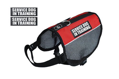 "Mesh ""Service Dog In Training"" Vest"
