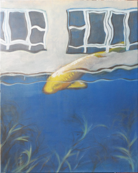 Az aranyhal