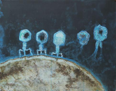 Vírusok (kék)