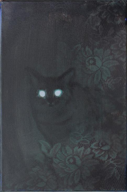 Cica a sötétben