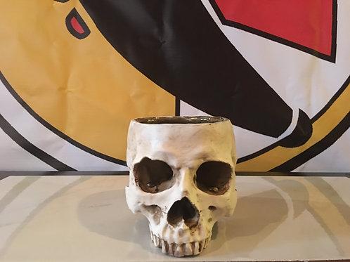 Large Drinking skull