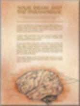 brain_article_page.jpg