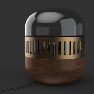 capsule19.2807.png