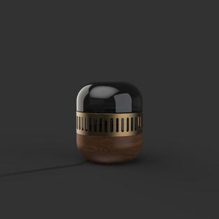 capsule19.2802.png