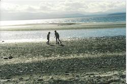 Smelt Bay, Cortes Island, BC