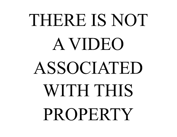 No Video without Logo.png