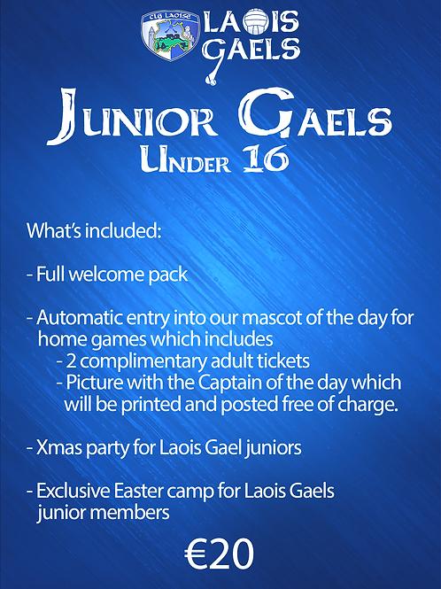 Junior  Gaels Membership