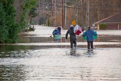 Flood Fife DSC_4450-0086