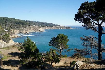 Coast Raw a_DSC7256.jpg
