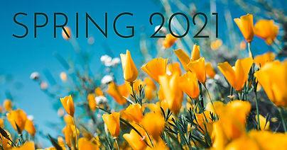 spring-2021-poppies.jpg