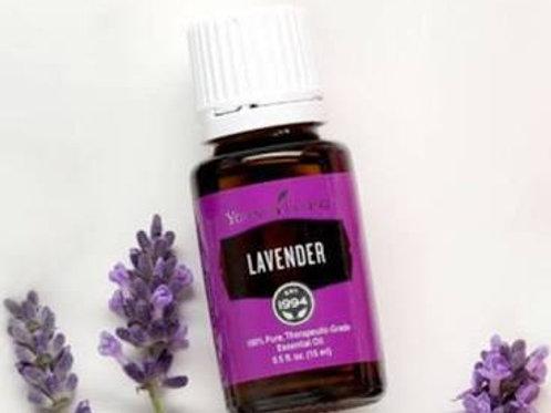 YL Lavender  15 ml
